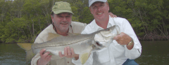 Fort Myers shelling excursions, water tours, manatee watching, dolphin watching