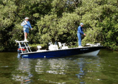 boat tours fishing expeditions florida sanibel islands gulf coast of Mexico
