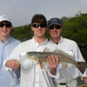 Fort Myers, Sanibel Florida Charter Fishing Report