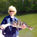 Fort Myers and Sanibel Island Florida Back Country Charter Fishing Report